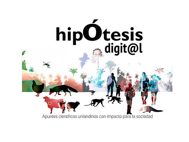 Portada en collage con siluetas para Revista Hipótesis