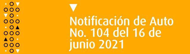 Auto No. 104 del 16 de junio 2021